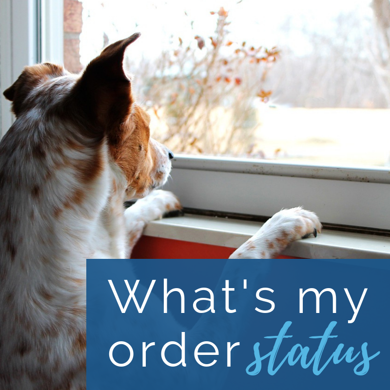 Whats My Order Status?